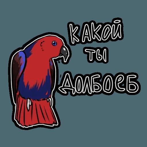 Попугаи - Sticker 23