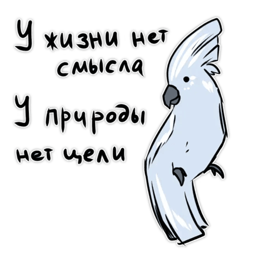 Попугаи - Sticker 9