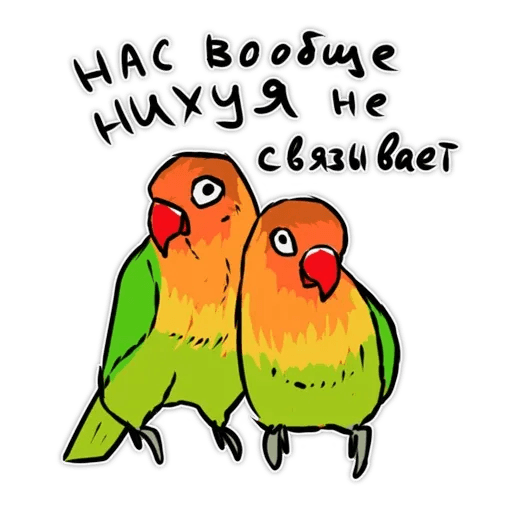 Попугаи - Sticker 7