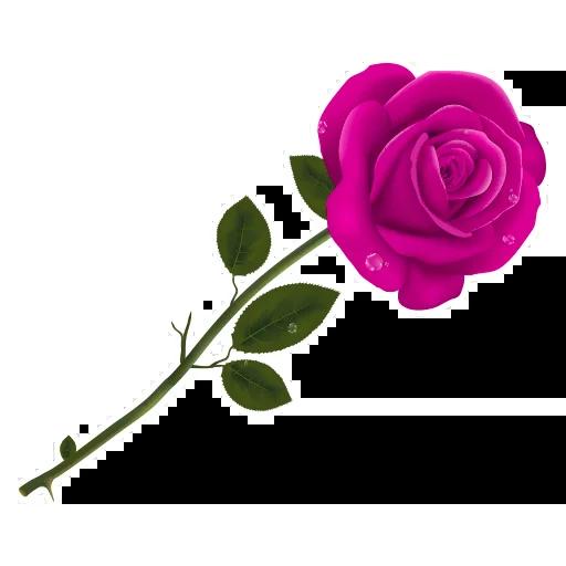 Pink Flowers @ykinanah - Sticker 7