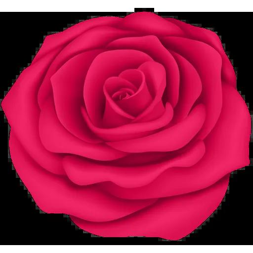 Pink Flowers @ykinanah - Sticker 8