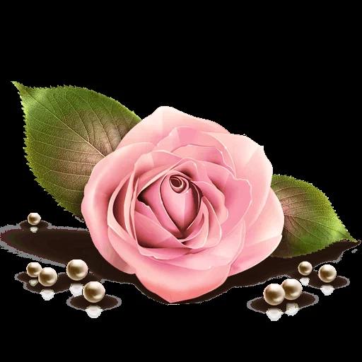 Pink Flowers @ykinanah - Sticker 11