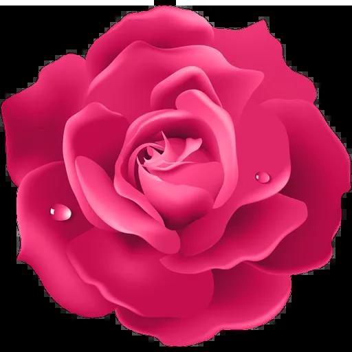Pink Flowers @ykinanah - Sticker 6