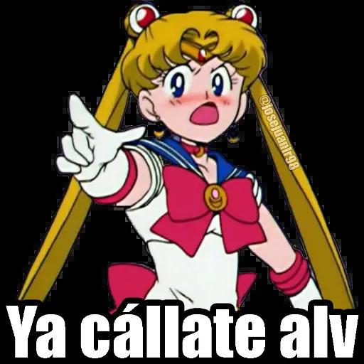 Sailor Moon Memes - Sticker 3