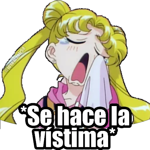 Sailor Moon Memes - Sticker 27