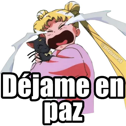 Sailor Moon Memes - Sticker 2