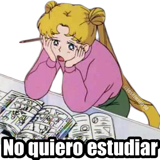 Sailor Moon Memes - Sticker 16