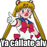 Sailor Moon Memes - Tray Sticker