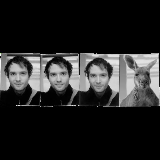 Känguru - Sticker 15