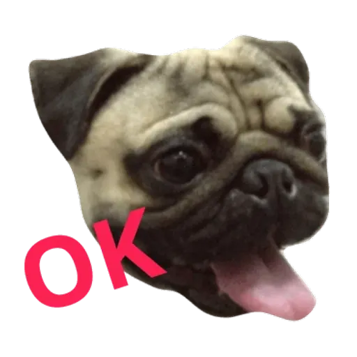 Pug - Sticker 1